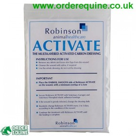 Robinsons Activated Carbon Dressing - 10cm x 15cm - Single