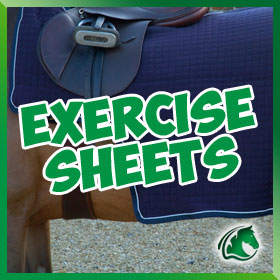 Exercise Sheets