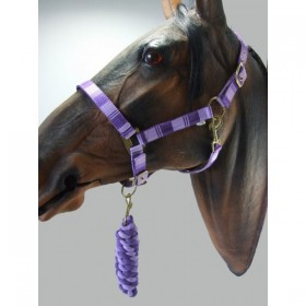 Headcollar & Lead Rope Set by Knight Rider (Purple & Lilac)