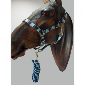 Headcollar & Lead Rope Set by Knight Rider (Turquise and Brown)
