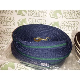 Rhinegold Padded Lunge Rein in Green and Blue